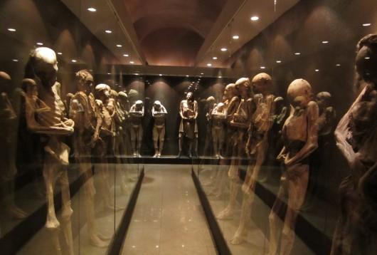 Musée des momies
