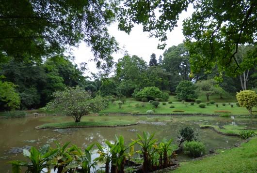 Le Jardin Botanique Peradeniya